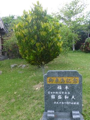 japan05521.jpg