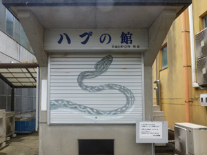 japan05709.jpg