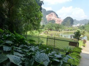 malaysia0519.jpg