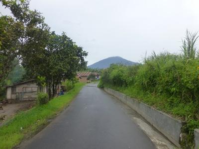 sumatera0306.jpg