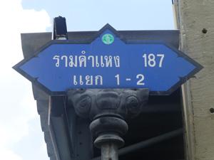 tahi25308.jpg