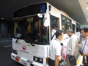 tahi29354.jpg