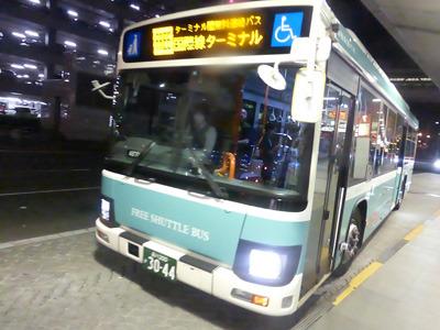 tahi30604.jpg