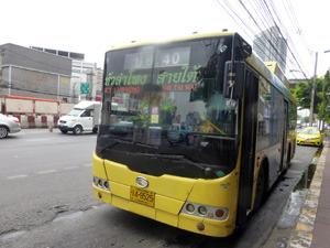 tahi30704.jpg